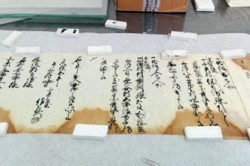 """Viaggio nella Biblioteca Vaticana: """"Così portiamo online i manoscritti più antichi del mondo"""" – Repubblica.it"""